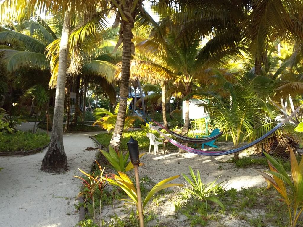 croisiere Belize Caraibes